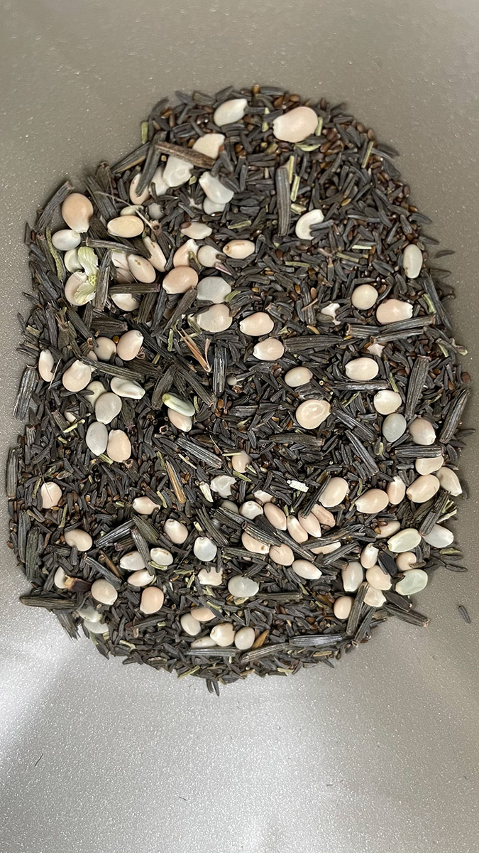 wildflower-seed-mix